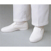 静電靴(エレクリヤ№20)白